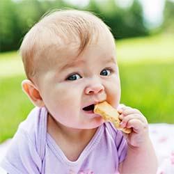 Introdução Alimentar - BLW (Baby Led Weaning) Como fazer?